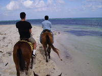 Horseback riding near the ocean.